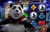Royal Panda Automaty